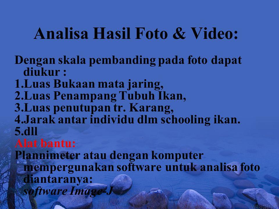 Analisa Hasil Foto & Video: Dengan skala pembanding pada foto dapat diukur : 1.Luas Bukaan mata jaring, 2.Luas Penampang Tubuh Ikan, 3.Luas penutupan