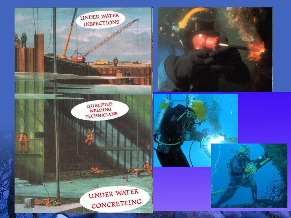 Analisa Hasil Foto & Video: Dengan skala pembanding pada foto dapat diukur : 1.Luas Bukaan mata jaring, 2.Luas Penampang Tubuh Ikan, 3.Luas penutupan tr.