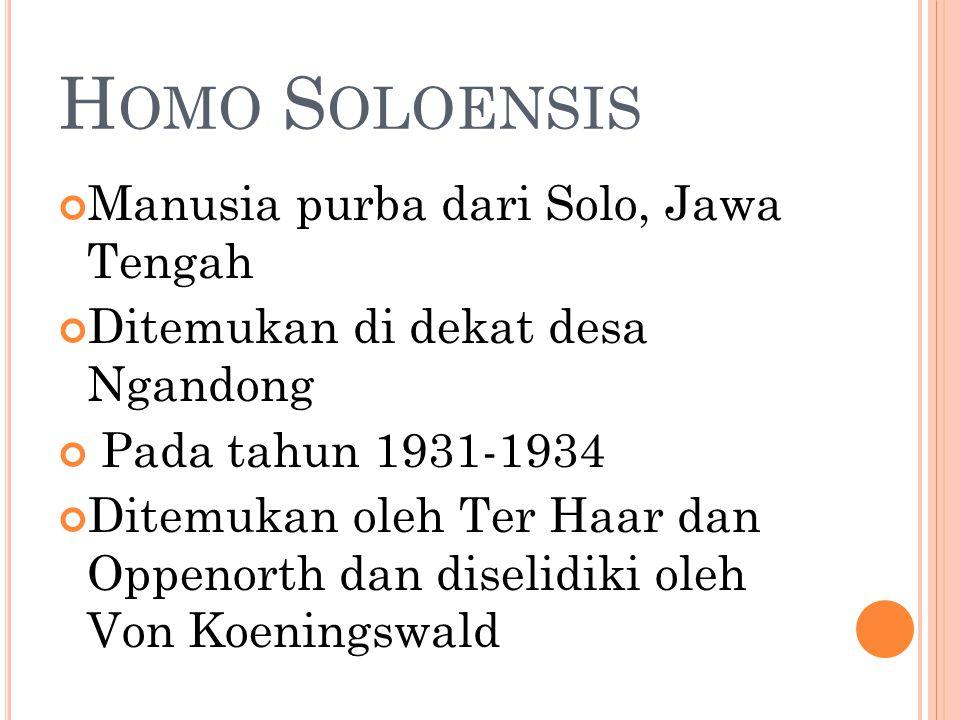 H OMO S OLOENSIS Manusia purba dari Solo, Jawa Tengah Ditemukan di dekat desa Ngandong Pada tahun 1931-1934 Ditemukan oleh Ter Haar dan Oppenorth dan diselidiki oleh Von Koeningswald