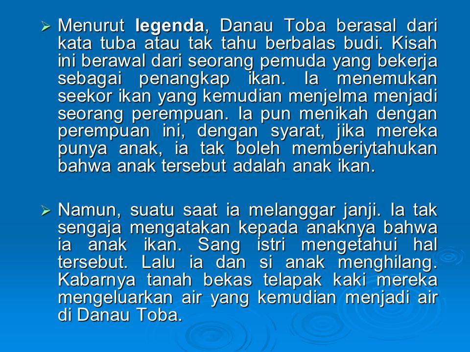  Menurut legenda, Danau Toba berasal dari kata tuba atau tak tahu berbalas budi.