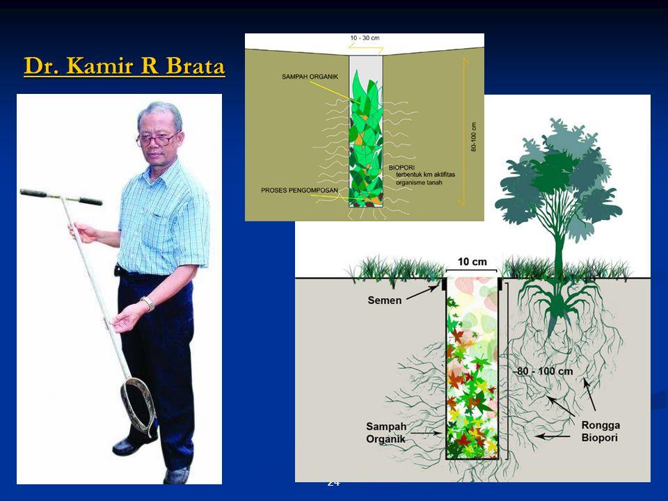 Dr. Kamir R Brata Dr. Kamir R Brata 24