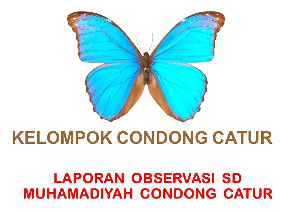 KELOMPOK CONDONG CATUR LAPORAN OBSERVASI SD MUHAMADIYAH CONDONG CATUR