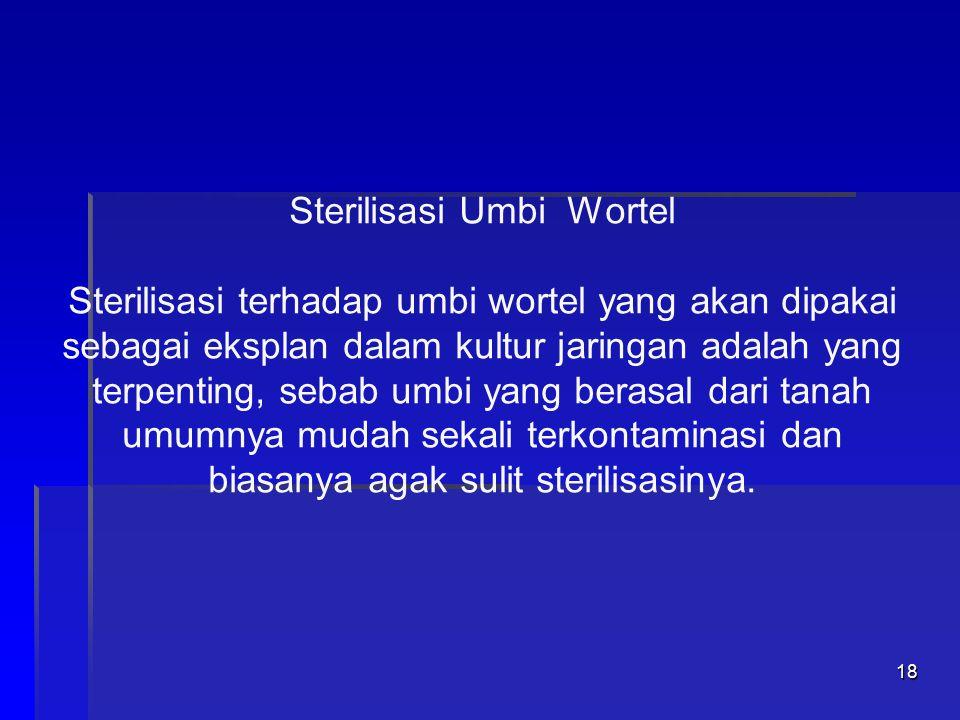 17 Sterilisasi Umbi Wortel