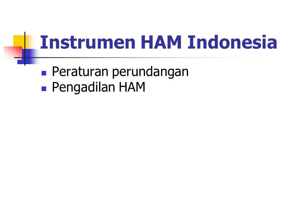 Instrumen HAM Indonesia Peraturan perundangan Pengadilan HAM