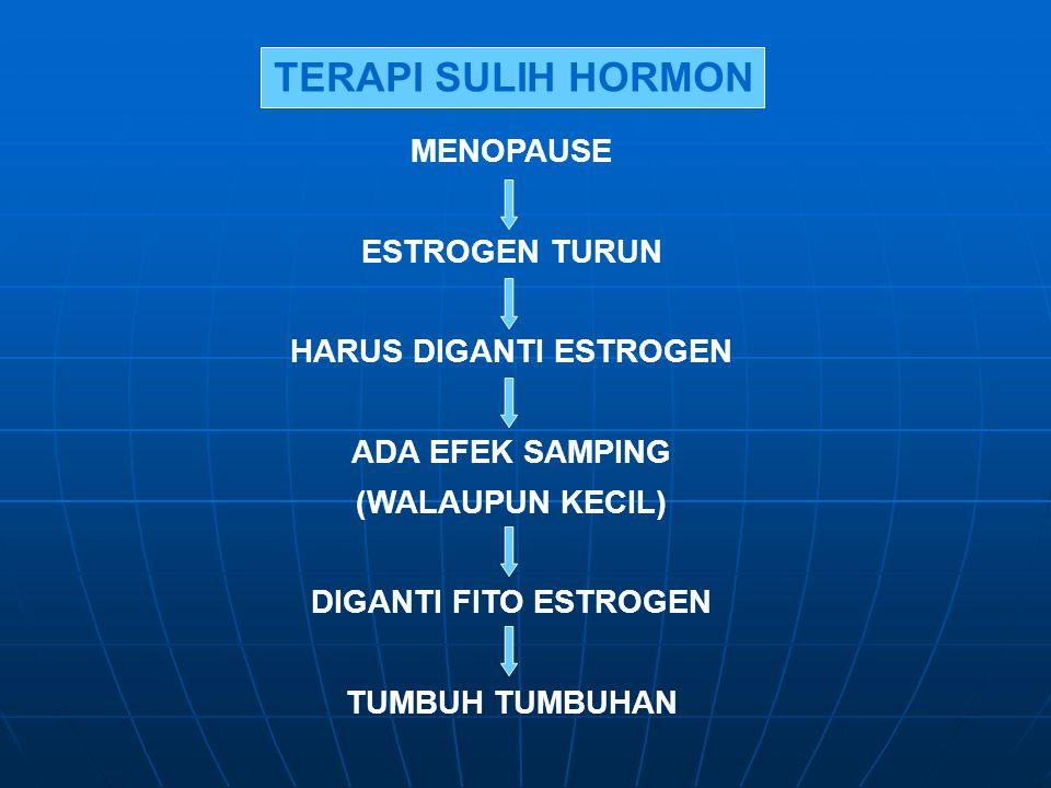 TERAPI SULIH HORMON MENOPAUSE ESTROGEN TURUN HARUS DIGANTI ESTROGEN ADA EFEK SAMPING (WALAUPUN KECIL) DIGANTI FITO ESTROGEN TUMBUH TUMBUHAN