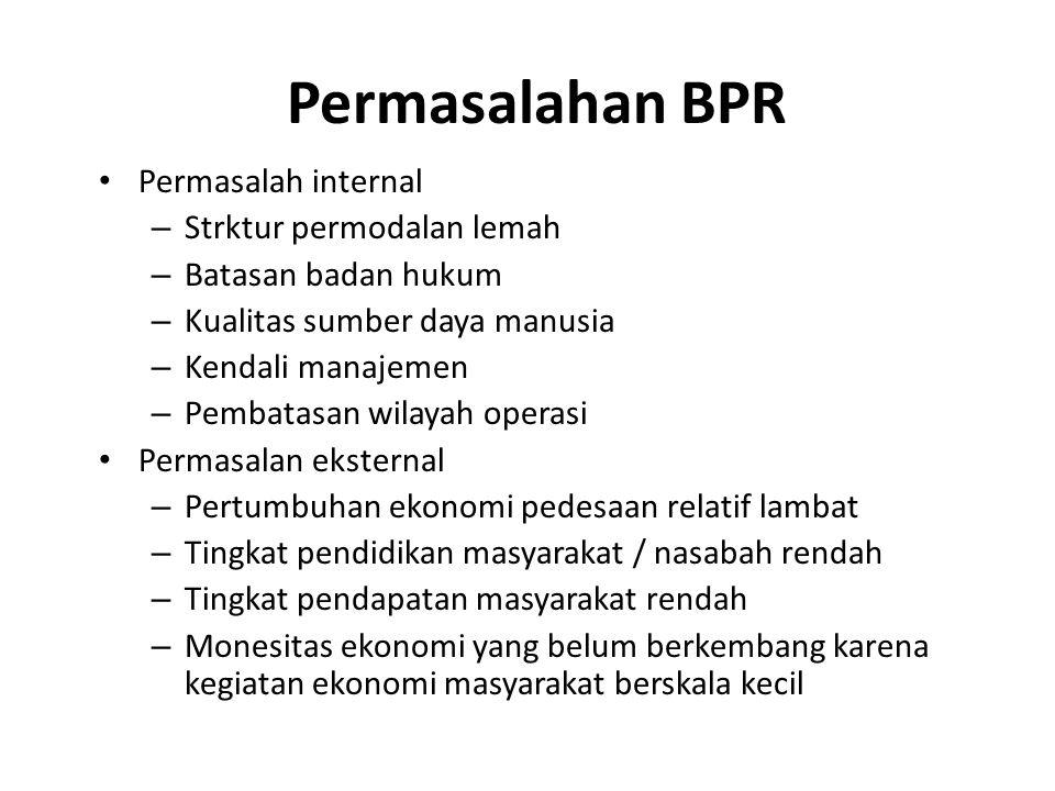 Permasalahan BPR Permasalah internal – Strktur permodalan lemah – Batasan badan hukum – Kualitas sumber daya manusia – Kendali manajemen – Pembatasan