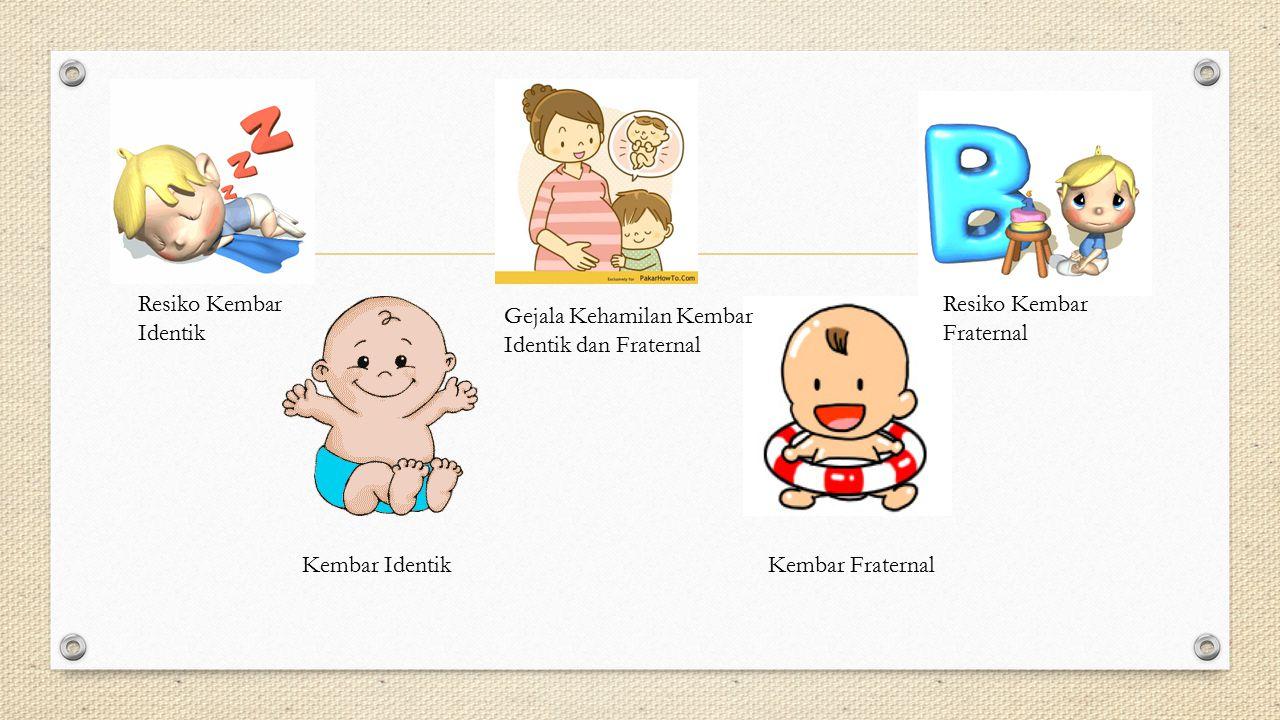 Kembar IdentikKembar Fraternal Resiko Kembar Identik Gejala Kehamilan Kembar Identik dan Fraternal Resiko Kembar Fraternal