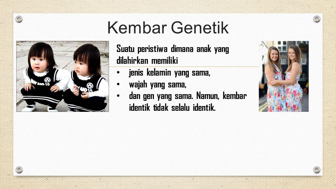 Kembar Genetik Suatu peristiwa dimana anak yang dilahirkan memiliki jenis kelamin yang sama, wajah yang sama, dan gen yang sama. Namun, kembar identik