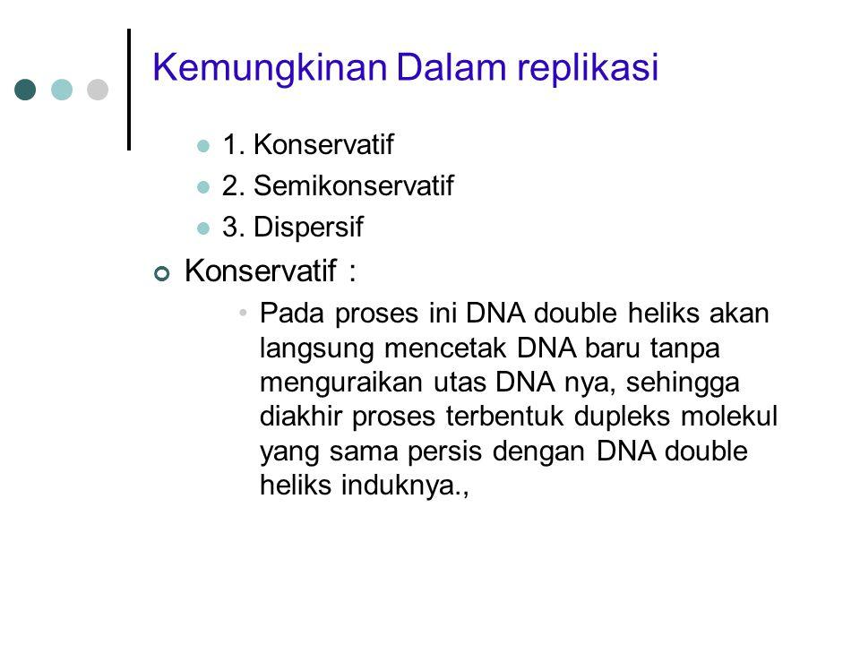 Kemungkinan Dalam replikasi 1. Konservatif 2. Semikonservatif 3. Dispersif Konservatif : Pada proses ini DNA double heliks akan langsung mencetak DNA