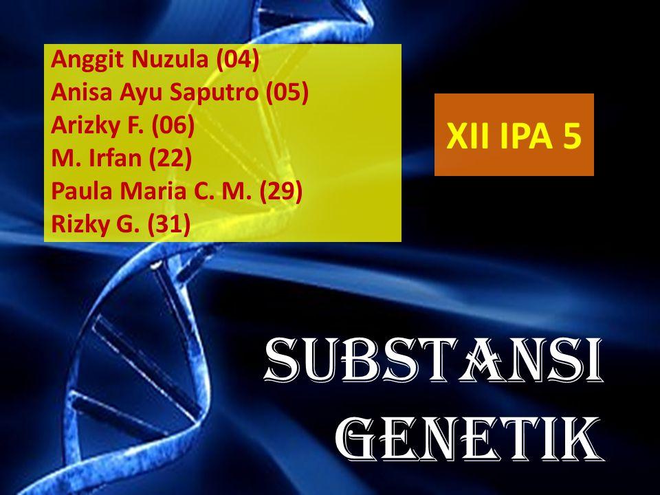SUBSTANSI GENETIK Anggit Nuzula (04) Anisa Ayu Saputro (05) Arizky F. (06) M. Irfan (22) Paula Maria C. M. (29) Rizky G. (31) XII IPA 5
