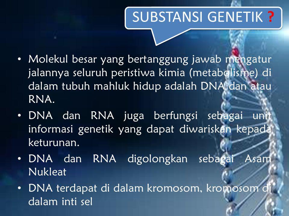 SUBSTANSI GENETIK ? Molekul besar yang bertanggung jawab mengatur jalannya seluruh peristiwa kimia (metabolisme) di dalam tubuh mahluk hidup adalah DN