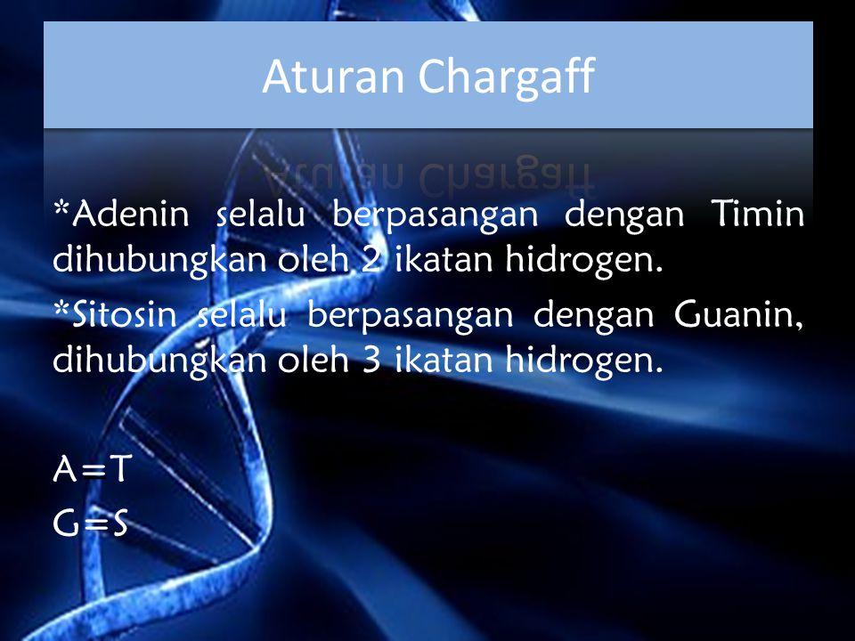 *Adenin selalu berpasangan dengan Timin dihubungkan oleh 2 ikatan hidrogen. *Sitosin selalu berpasangan dengan Guanin, dihubungkan oleh 3 ikatan hidro