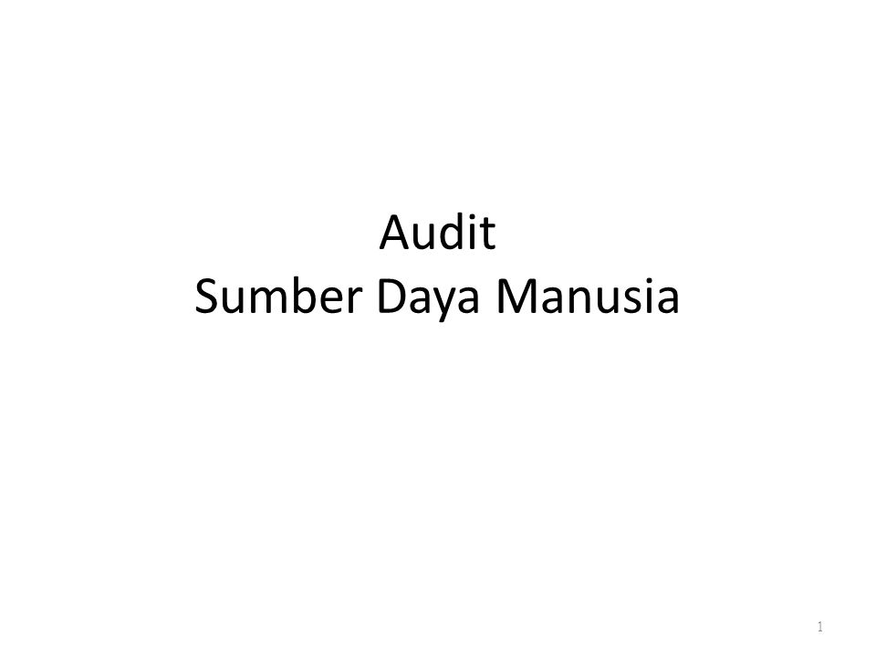 Audit Sumber Daya Manusia 1