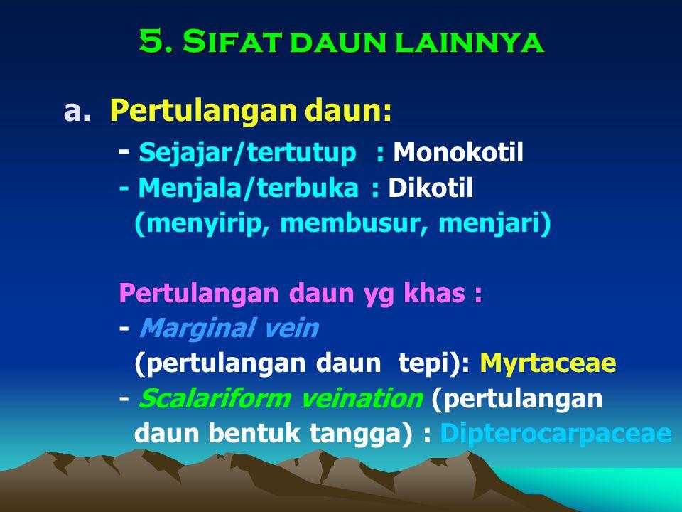 5. Sifat daun lainnya a.Pertulangan daun: - Sejajar/tertutup : Monokotil - Menjala/terbuka : Dikotil (menyirip, membusur, menjari) Pertulangan daun yg
