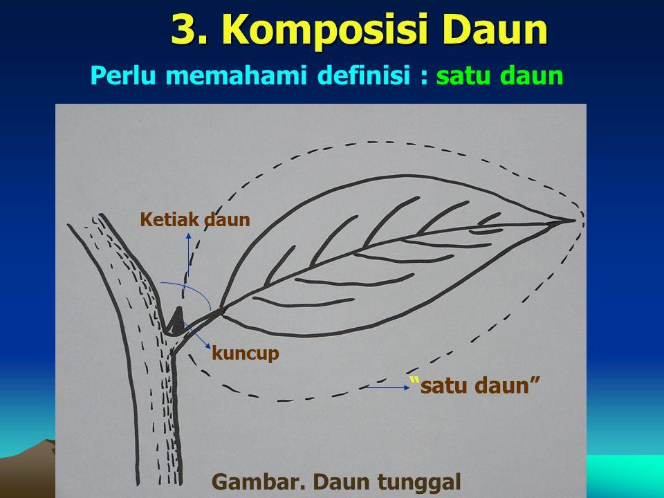 "3. Komposisi Daun Perlu memahami definisi : satu daun Ketiak daun kuncup ""satu daun"" Gambar. Daun tunggal"