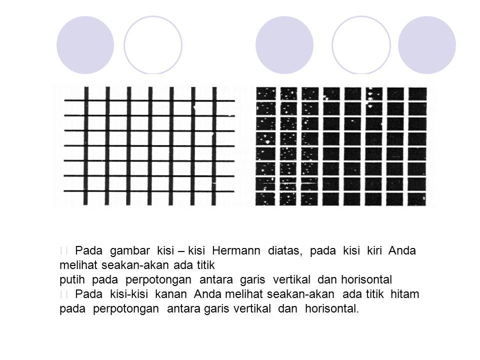 ƒ Pada gambar kisi – kisi Hermann diatas, pada kisi kiri Anda melihat seakan-akan ada titik putih pada perpotongan antara garis vertikal dan horisonta