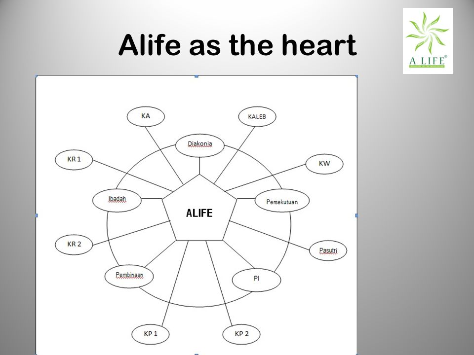 Alife as the heart