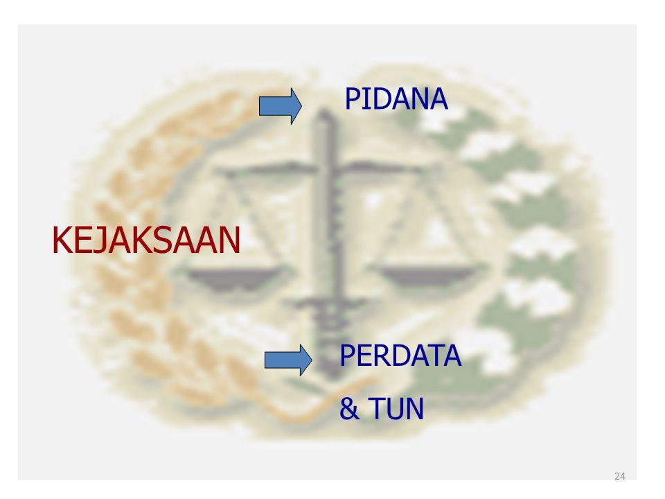 Apabila Pejabat TUN digugat di Pengadilan TUN 6.Dapat dipercayakan kepada unsur pemerintah yaitu kepada Kejaksaan sebagai Jaksa Pengacara Negara 23