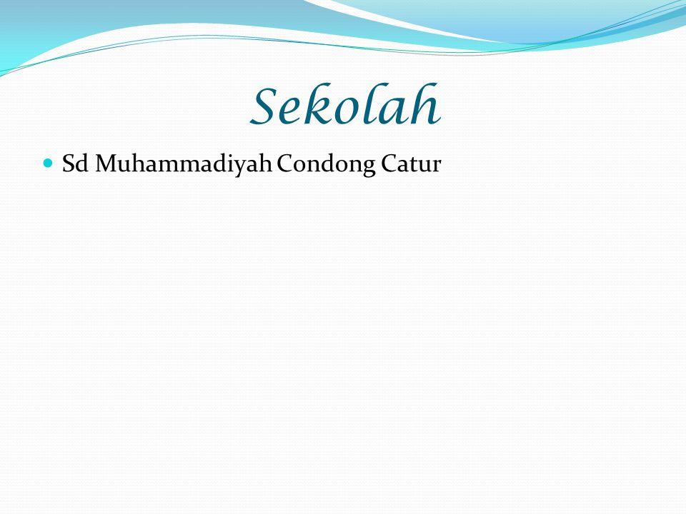 Sekolah Sd Muhammadiyah Condong Catur