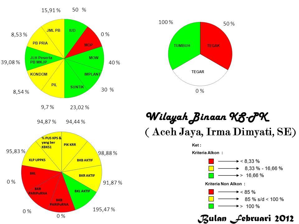 50 % 0 % 40 % 30 % 23,02 % 9,7 % 8,54 % 39,08 % 8,53 % 15,91 % 94,44 % 98,88 % 91,87 % 195,47 % 0 % 95,83 % 94,87 % 100 % 50 % 0 % Aceh Jaya Wilayah B