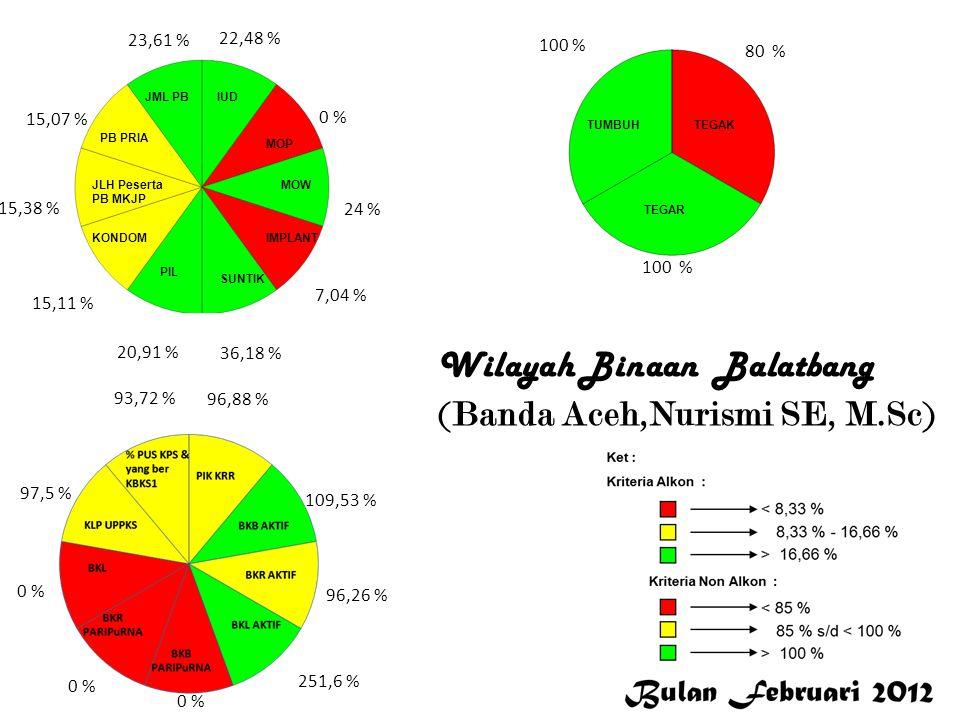 13,51 % 0 % 5,26 % 38 % 22,86 % 9,71 % 1,54 % 23,47 % 1,54 % 11,82 % 93,75 % 0 % 96,67 % 99,41 % 100 % 50 % 0 % S i m e u l u e Wilayah Binaan Balatbang ( Dra.