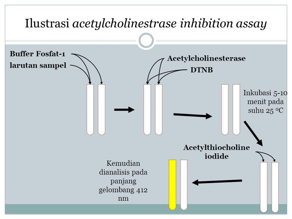 Ilustrasi acetylcholinestrase inhibition assay DTNB Acetylthiocholine iodide Acetylcholinesterase Buffer Fosfat-1 larutan sampel Inkubasi 5-10 menit p