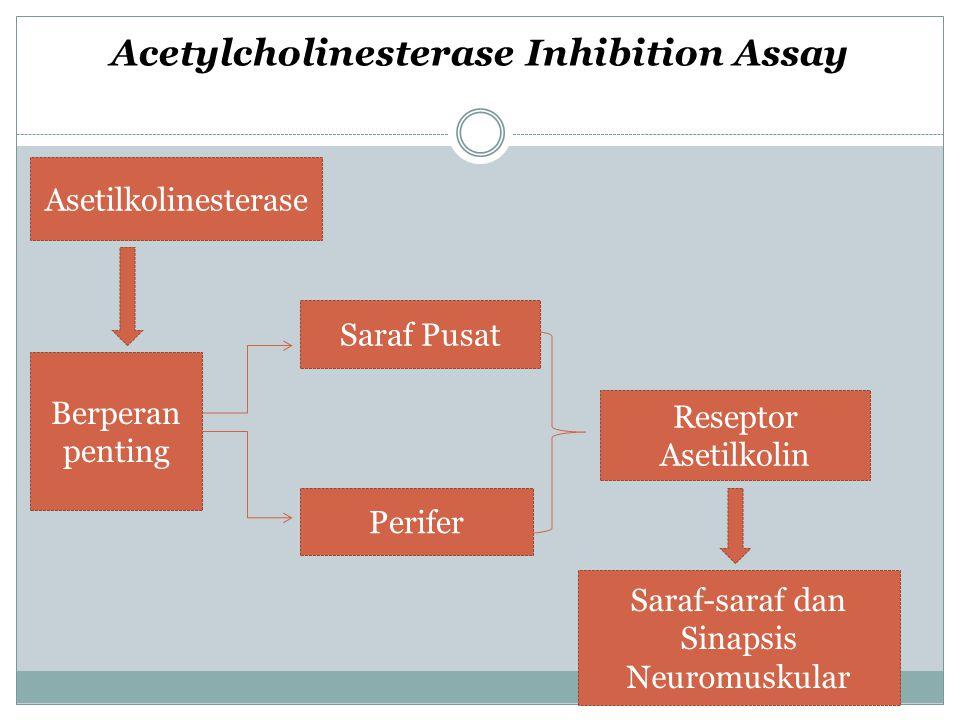 Asetilkolinesterase Berperan penting Saraf Pusat Perifer Reseptor Asetilkolin Saraf-saraf dan Sinapsis Neuromuskular