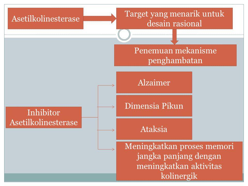 Asetilkolinesterase Target yang menarik untuk desain rasional Penemuan mekanisme penghambatan Inhibitor Asetilkolinesterase Alzaimer Dimensia Pikun At