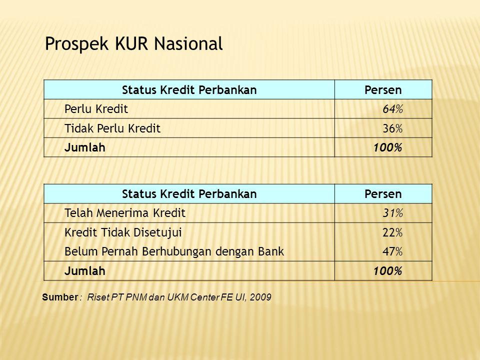 Prospek KUR Nasional Sumber : Riset PT PNM dan UKM Center FE UI, 2009 Status Kredit PerbankanPersen Perlu Kredit64% Tidak Perlu Kredit36% Jumlah100% S