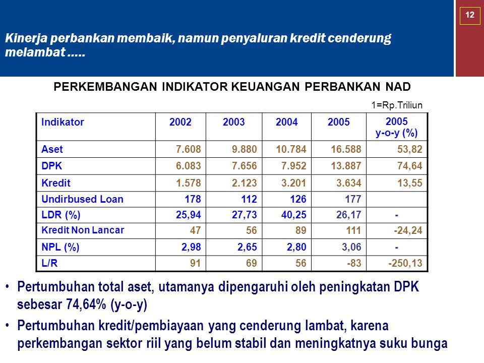 12 Pertumbuhan total aset, utamanya dipengaruhi oleh peningkatan DPK sebesar 74,64% (y-o-y) Pertumbuhan kredit/pembiayaan yang cenderung lambat, karen