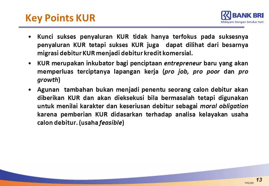 Key Points KUR Kunci sukses penyaluran KUR tidak hanya terfokus pada suksesnya penyaluran KUR tetapi sukses KUR juga dapat dilihat dari besarnya migra