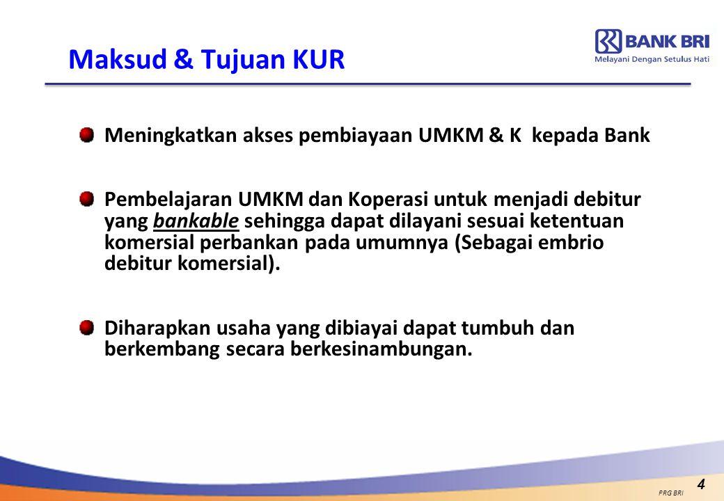 4 Maksud & Tujuan KUR Meningkatkan akses pembiayaan UMKM & K kepada Bank Pembelajaran UMKM dan Koperasi untuk menjadi debitur yang bankable sehingga d