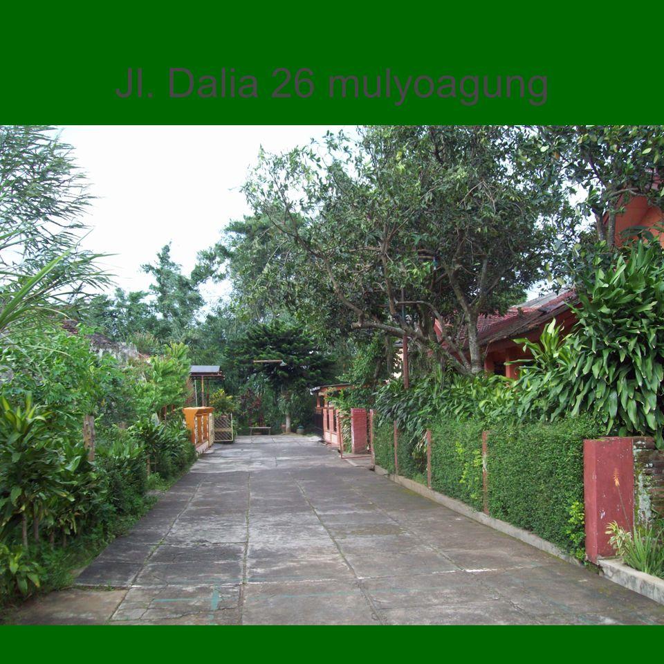 Jl. Dalia 26 mulyoagung