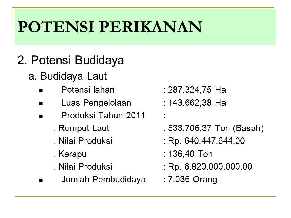 2. Potensi Budidaya a. Budidaya Laut Potensi lahan : 287.324,75 Ha Luas Pengelolaan: 143.662,38 Ha Produksi Tahun 2011 :. Rumput Laut : 533.706,37 Ton