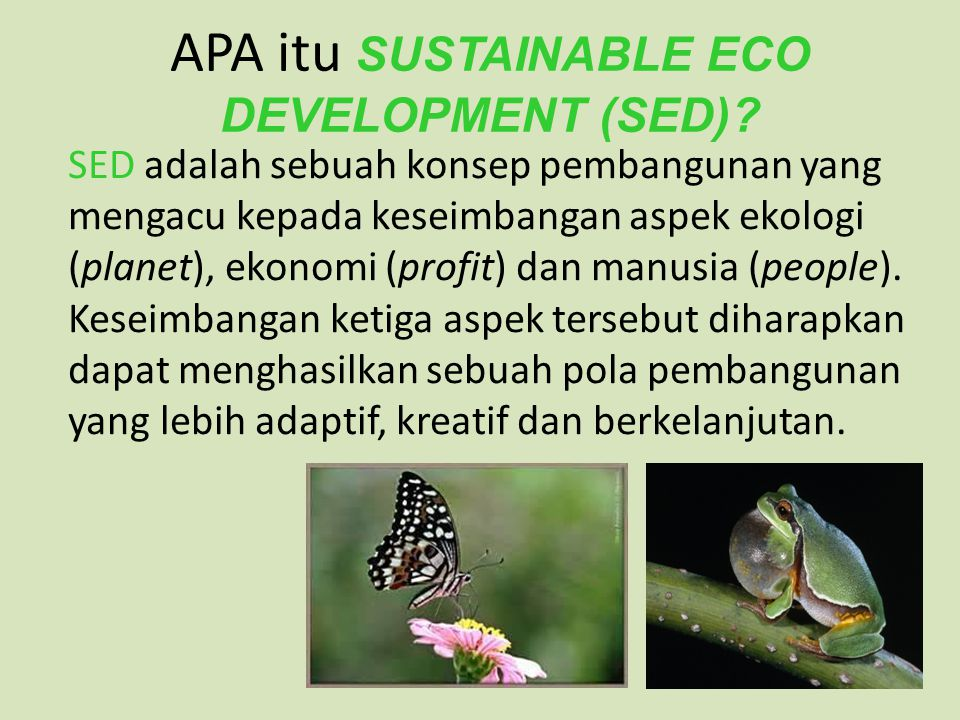 APA itu SUSTAINABLE ECO DEVELOPMENT (SED).