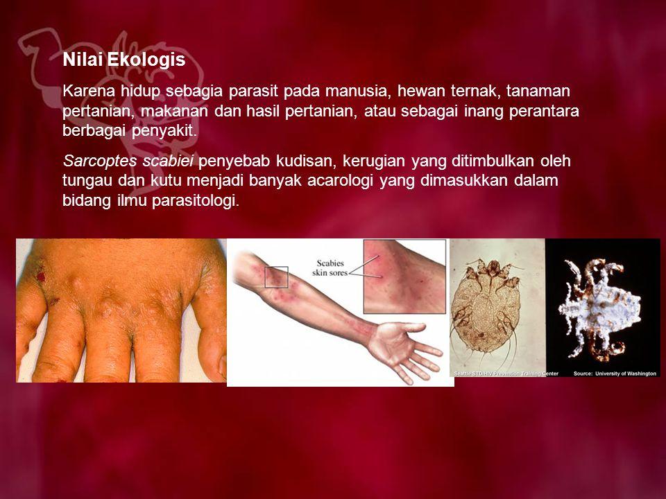 Nilai Ekologis Karena hidup sebagia parasit pada manusia, hewan ternak, tanaman pertanian, makanan dan hasil pertanian, atau sebagai inang perantara b