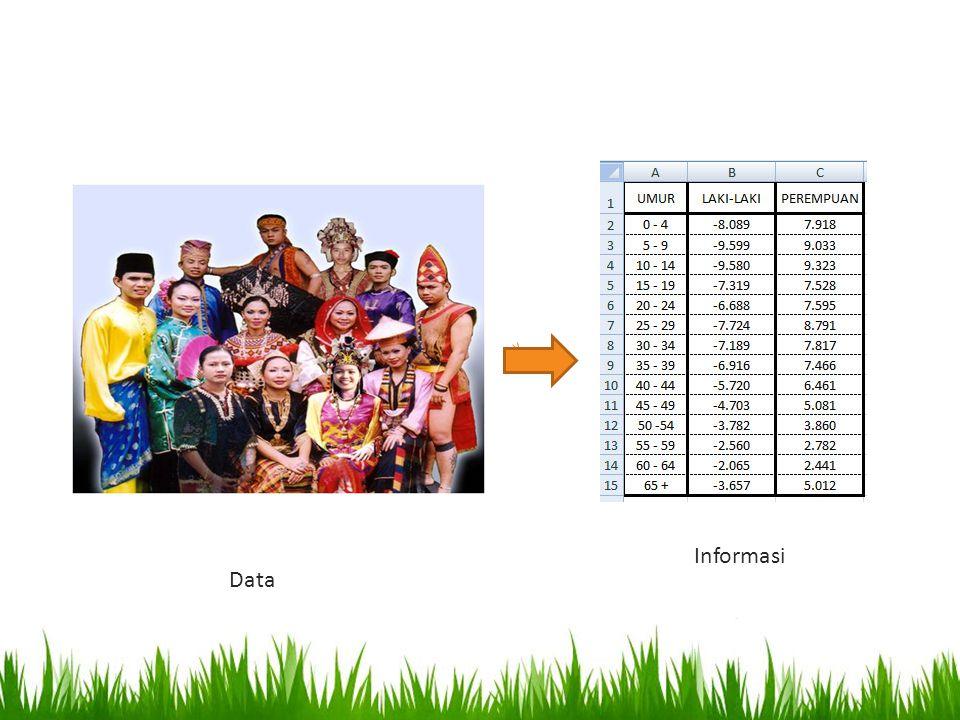 Data Informasi