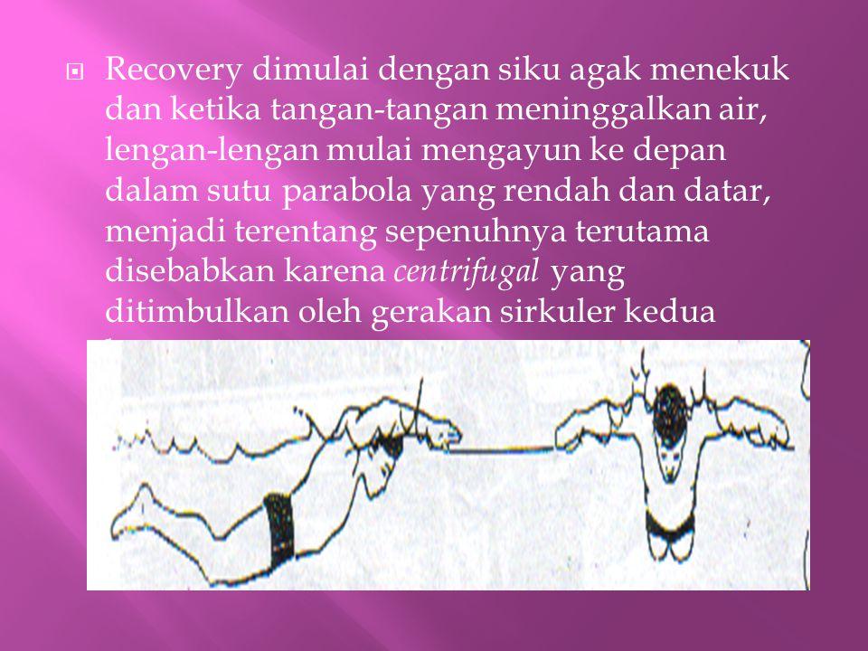  Recovery dimulai dengan siku agak menekuk dan ketika tangan-tangan meninggalkan air, lengan-lengan mulai mengayun ke depan dalam sutu parabola yang