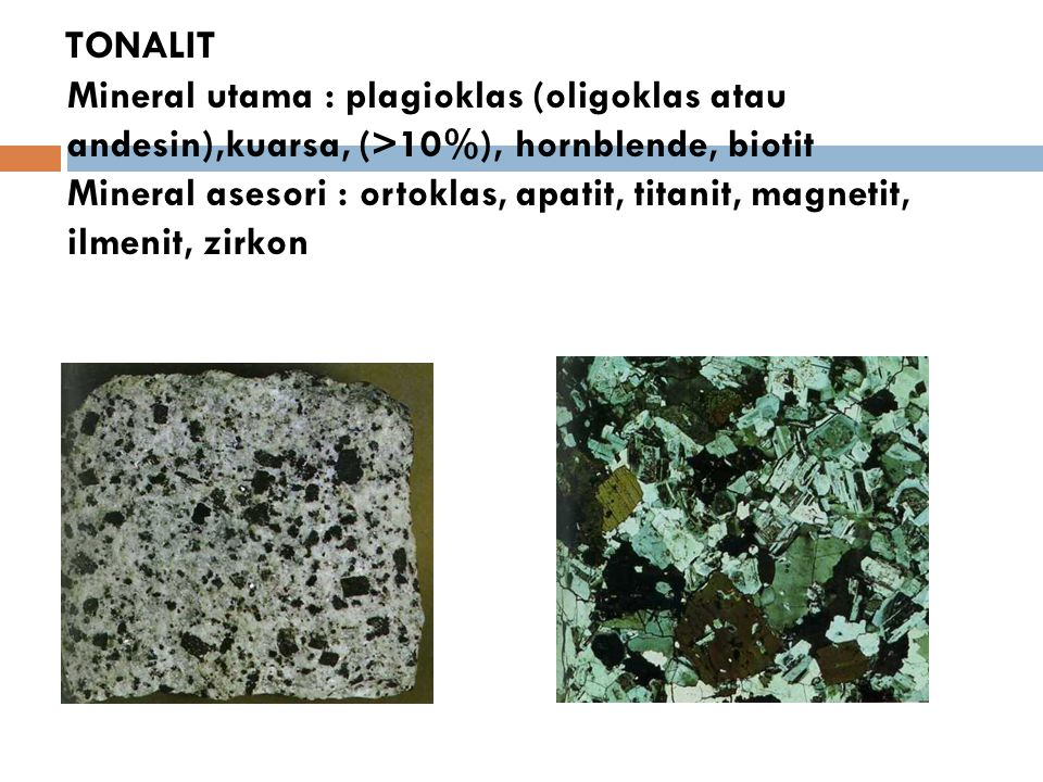 TONALIT Mineral utama : plagioklas (oligoklas atau andesin),kuarsa, (>10%), hornblende, biotit Mineral asesori : ortoklas, apatit, titanit, magnetit,