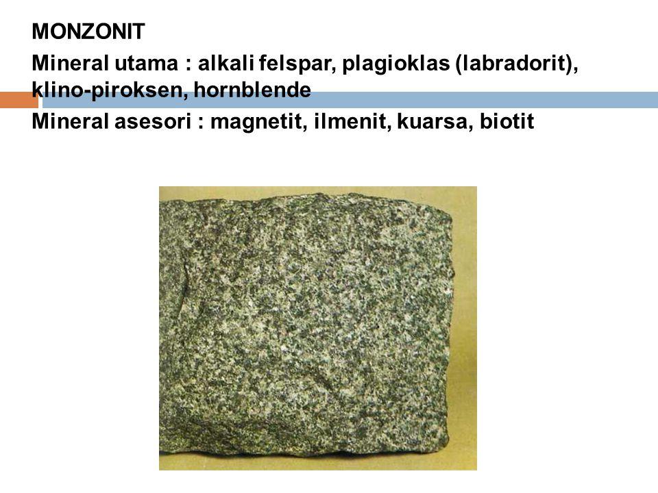 MONZONIT Mineral utama : alkali felspar, plagioklas (labradorit), klino-piroksen, hornblende Mineral asesori : magnetit, ilmenit, kuarsa, biotit