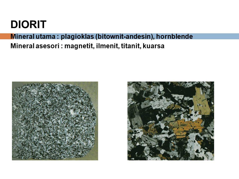 DIORIT Mineral utama : plagioklas (bitownit-andesin), hornblende Mineral asesori : magnetit, ilmenit, titanit, kuarsa