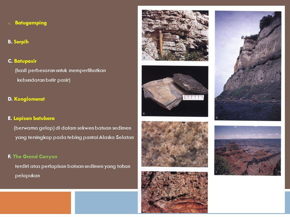 A. Batugamping B. Serpih C. Batupasir (hasil perbesaran untuk memperlihatkan kebundaran butir pasir) D. Konglomerat E. Lapisan batubara (berwarna gela