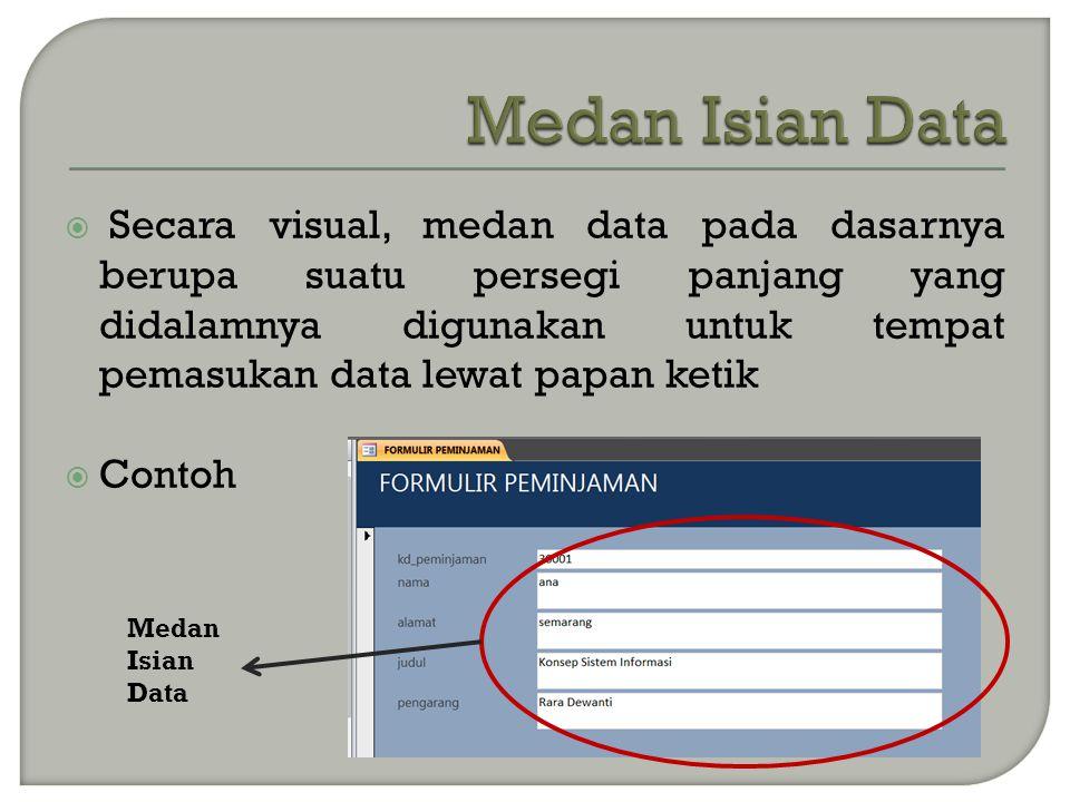  Secara visual, medan data pada dasarnya berupa suatu persegi panjang yang didalamnya digunakan untuk tempat pemasukan data lewat papan ketik  Contoh Medan Isian Data