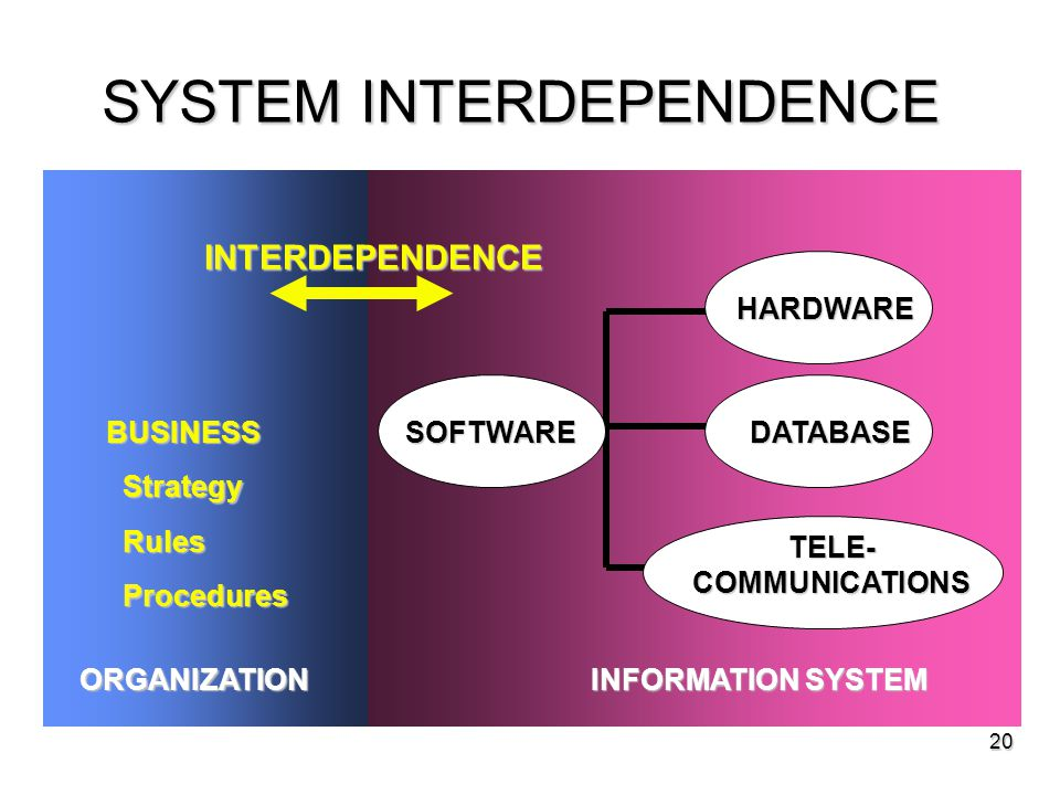 20 SYSTEM INTERDEPENDENCE BUSINESS Strategy Strategy Rules Rules Procedures Procedures ORGANIZATION INFORMATION SYSTEM HARDWARE SOFTWAREDATABASE TELE-