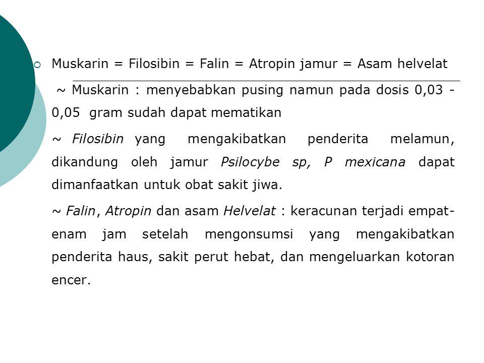  Muskarin = Filosibin = Falin = Atropin jamur = Asam helvelat ~ Muskarin : menyebabkan pusing namun pada dosis 0,03 - 0,05 gram sudah dapat mematikan