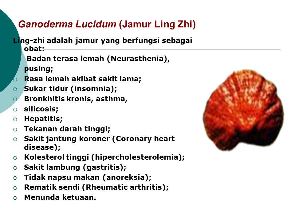 Ganoderma Lucidum (Jamur Ling Zhi) Ling-zhi adalah jamur yang berfungsi sebagai obat:  Badan terasa lemah (Neurasthenia),  pusing;  Rasa lemah akib