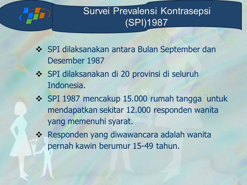  SPI dilaksanakan antara Bulan September dan Desember 1987  SPI dilaksanakan di 20 provinsi di seluruh Indonesia.  SPI 1987 mencakup 15.000 rumah t