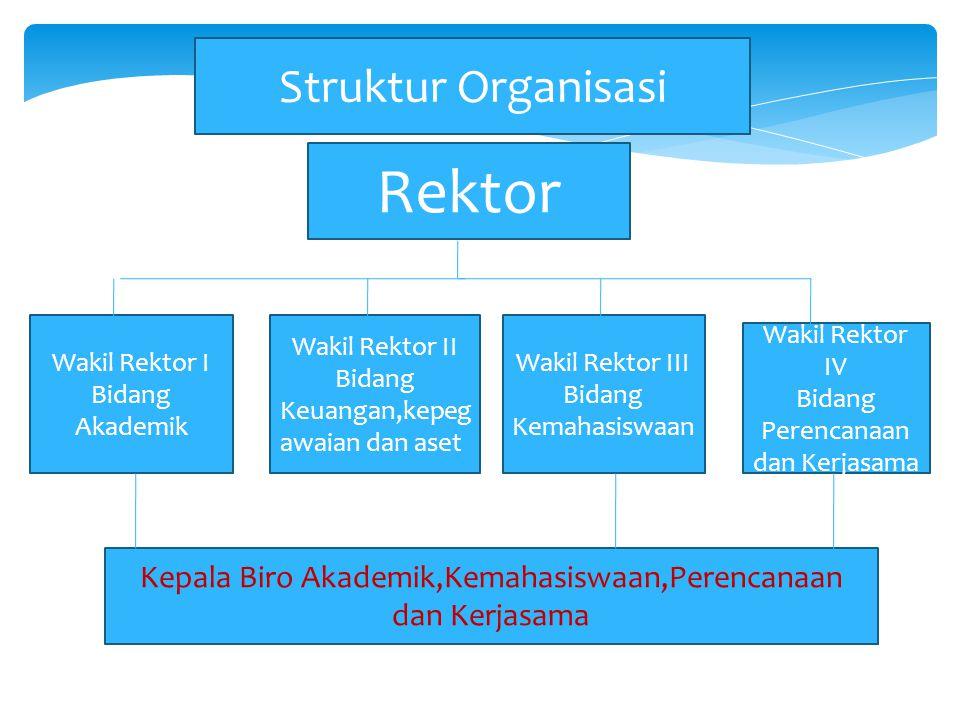 Struktur Organisasi Rektor Wakil Rektor II Bidang Keuangan,kepeg awaian dan aset Wakil Rektor I Bidang Akademik Wakil Rektor III Bidang Kemahasiswaan