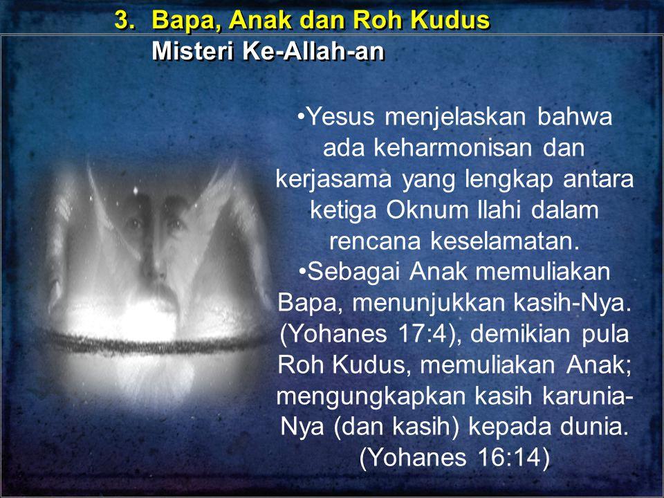 Yesus menjelaskan bahwa ada keharmonisan dan kerjasama yang lengkap antara ketiga Oknum Ilahi dalam rencana keselamatan. Sebagai Anak memuliakan Bapa,