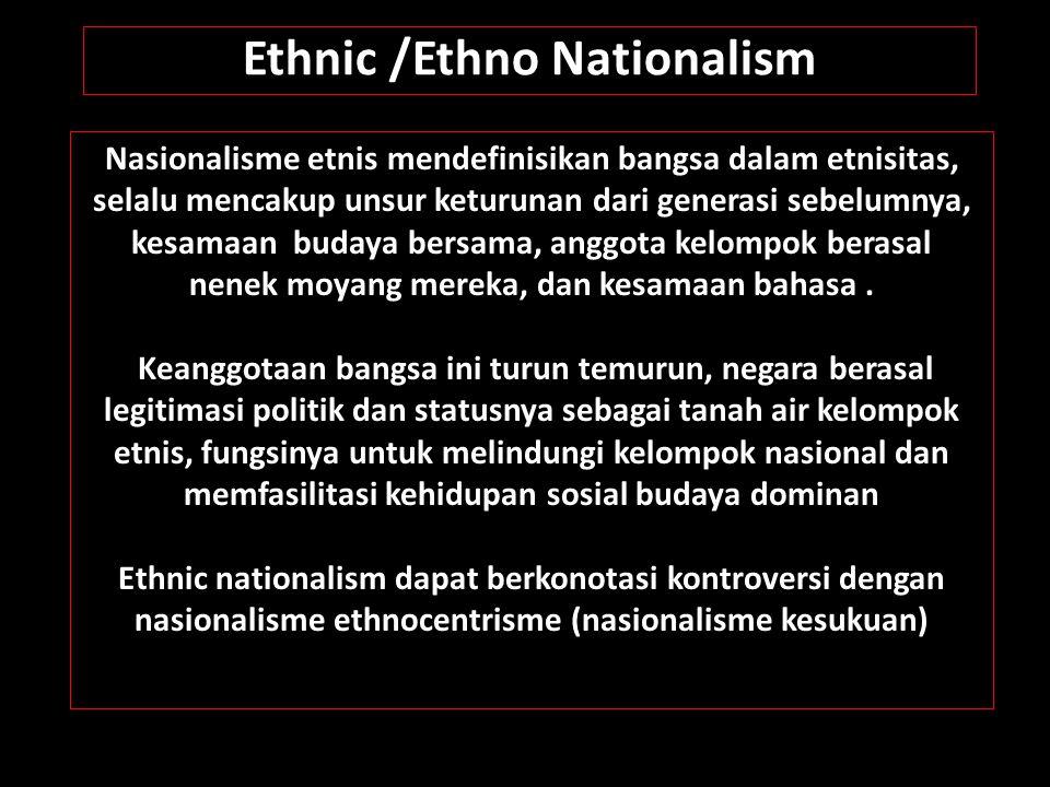 Nasionalisme etnis mendefinisikan bangsa dalam etnisitas, selalu mencakup unsur keturunan dari generasi sebelumnya, kesamaan budaya bersama, anggota k